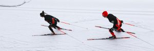 langlaufen, langlaufski, langlauf, langlaufausrüstung, langlaufbekleidung, langlaufski set, langlaufen lernen, langlaufski länge, langlaufski kaufen, loipe, langlaufen österreich, langlaufen wien, skilanglauf, langlaufte, langlauf skating, langlaufloipen, loipen, langlaufski test, langlaufen in österreich, langlauf skating set, langlauf ski, langlauf set